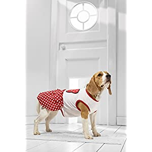 Medium Dog Summer Dress for Beagle Cocker Spaniel Dachshund Italian Greyhound (Small Medium Size, red, white)