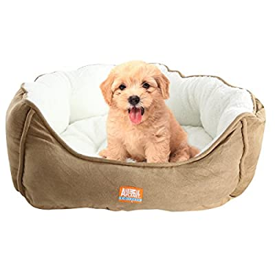 """Animal Planet Micro Suede Round Dog/Cat Bed, Comfortable Stylish Pet Bedding, Premium Plush Fiber Fill, Medium and Small Size Dogs (24""""X17""""X9"""")"""
