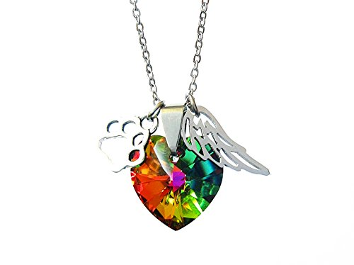 - Rainbow Bridge Paw Print and Angel Wing Stainless Steel Necklace with Colorful Crystal,Pet Loss Memorial Gift In Memeroy of Pet