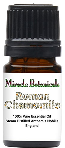 Miracle Botanicals Roman Chamomile Essential Oil   100  Pure Anthemis Nobilis   Therapeutic Grade 5Ml
