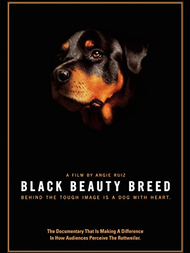 black-beauty-breed