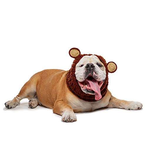 Zoo Snoods Grizzly Bear Dog Costume - Neck and Ear Warmer Headband for Pets (Large) -