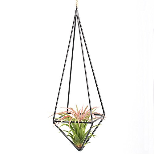 Modern rustic art style freestanding hanging metal for Geometric air plant holder