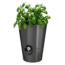 Emsa Germany: Fresh and Healthy Herbs for Weeks – Indoor Garden | Stylish self-watering Planter, Foolproof & Easy to use | 5.1 inch | Granite