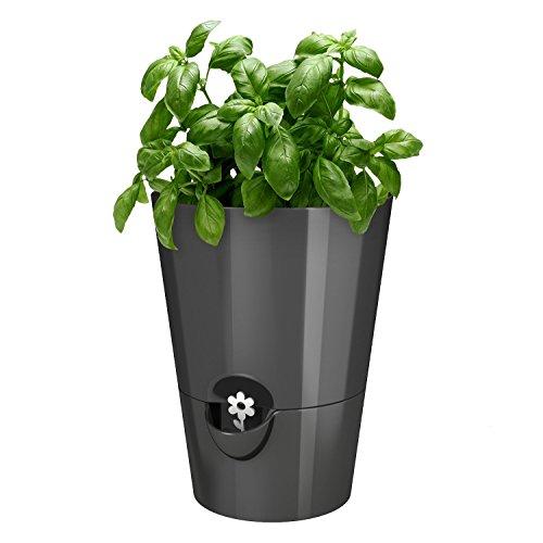 Emsa 514245 Fresh Herbs, windowsill Pot, 脴 13 cm, Height: 17 cm, Colour: Granite