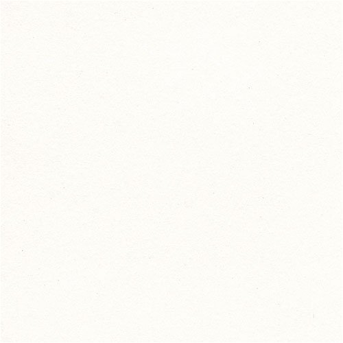 Via Vellum Cool White 65# Cover 8.5