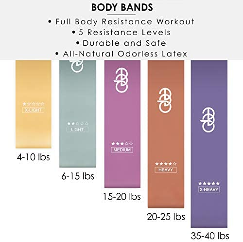 Women's Fitness Bundle: Waist Trimmer for Women, Fabric Booty Band, Resistance Bands for Legs and Butt & Core Sliders - Full Body Workout Bands - Exercise Equipment - Wear Two at Once 3
