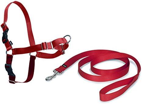 Croci C5066238 Petsafe Pettorina: Amazon.es: Productos para mascotas