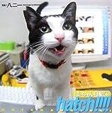 hatch!!!!はっちゃん日記〈4〉