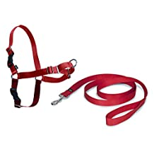 PetSafe Easy Walk Harness, Large, Red