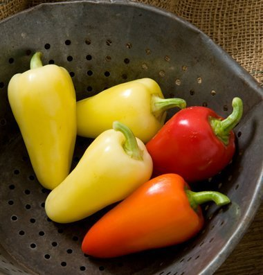 David's Garden Seeds Pepper Hot Havasu D3096 (Multi) 25 Hybrid Seeds