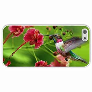 Apple iPhone 5 5S Cases Customized Gifts hummingbirds exotic flower swing Case