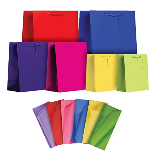 Jillson Roberts 6-Count All-Occasion Solid Color Gift Bags with Tissue Available in 4 Different Assortments, Bold and Bright Assorted Sizes