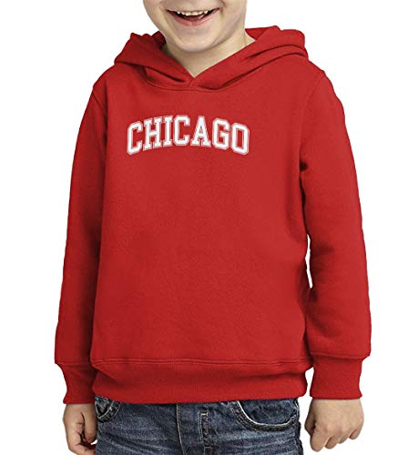 Chicago - State Proud Strong Pride Toddler/Youth Fleece Hoodie (Red, X-Small (Youth)) -