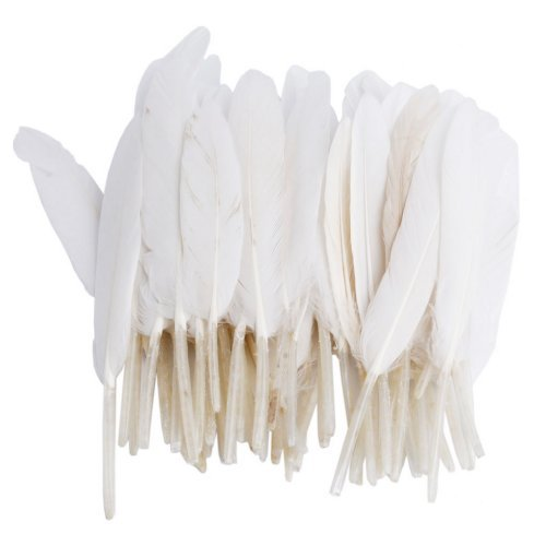 MicroMall Home Decor Decorating Improvement Goose Feathers for Craft Wedding, White, 50 Pieces (Faux Holiday Garland)