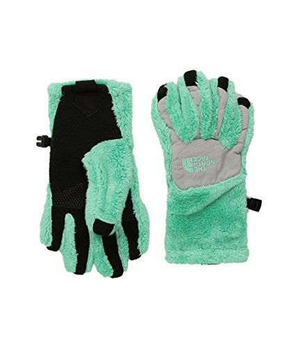 (The North Face Girls' Denali Thermal Etip Glove - bermuda green/metallic)