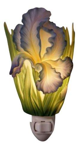 Bearded Iris Nightlight Flowers Designs product image