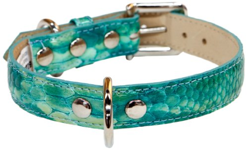 - Bluemax Genuine Leather Patent Snake Dog Collar, 3/4-Inch by 16-Inch, Teal