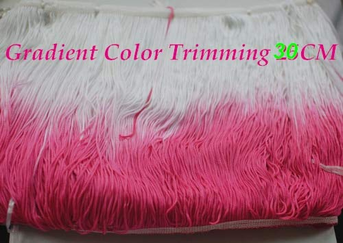 Laliva 5 YDS/Lot Rayon Latin Tassel Dip Dye Ombre Fringe Trimming Loop Bottom lace Gradient Color - (Color: 30CM)