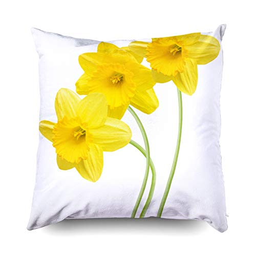 Asdecmoly Sofa Pillow, Three Yellow Daffodil Flowers Isolated Cover for Kids Throw Cushion Square 20X20 Inchs Home Sofa Bed Travel Gift