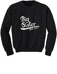 TeeStars - Big Sister Est 2018 - Sibling Gift Idea Youth Kids Sweatshirt