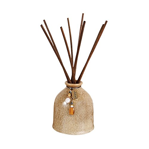 (Pomeroy Rockwell Reed Diffuser In Light Brown, Light Brown)