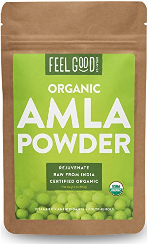 Fruit From India - Organic Amla Powder - 4oz Resealable Bag - 100% Raw From India - by Feel Good Organics