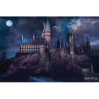 Harry Potter - Movie Poster Print (Hogwarts By Night) (Size: 36