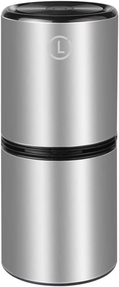 ZSLD Coche De Plasma De Aire Ionizadores Generador De Ozono, Filtro De Aire Portátil Ayuda A Eliminar Los Gérmenes, Olores Y Alérgenos como Los Ácaros del Polvo Y Esporas De Moho,Plata