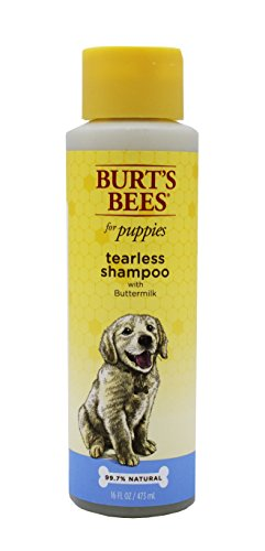 Burt's Bees for Puppies All-Natural Tearless Shampoo With Buttermilk | Best Tearless Shampoo For All Puppies and Dogs