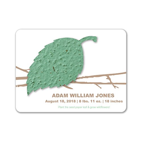 Bloomin Plantable Aspen Birth Announcement Favor with Seed Paper - Sage {25 Card Set}