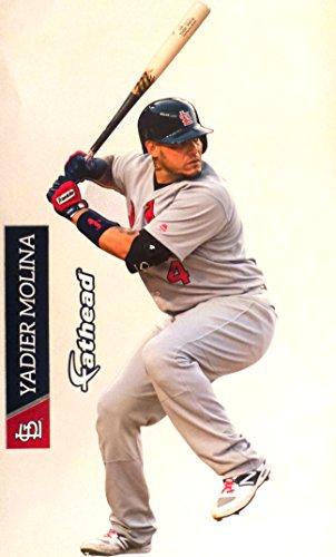 Yadier Molina FATHEAD St. Louis Cardinals Logo Set Official MLB Vinyl Wall Graphics 17