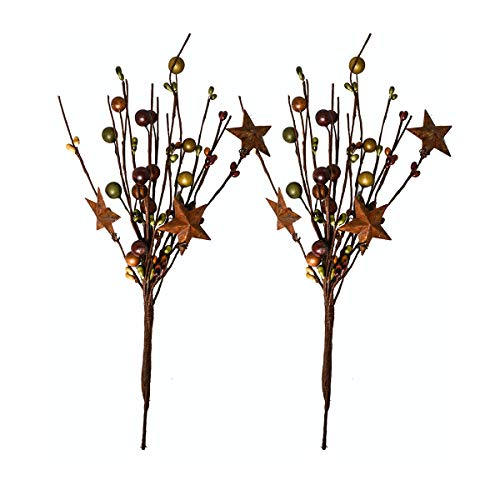 OBI Pip Berry Metal Star Picks 2piece - 9inch Twigs Multi-Color Berries - Mini Artificial Plant Stem for Vases or Crafts - Country Primitive Floral Home Wedding Decor