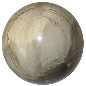 Petrified Wood Ball 53 Forest Fossil Tree Crystal Brown Earth Grounding Energy Stone Sphere 2.3""