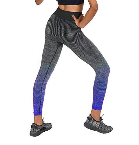 Y&L Mujeres Deporte Pantalones De Las Polainas De Entrenamiento De Ejecución De Yoga Mallas De Fitness Cómodo Troursers Azul Oscuro