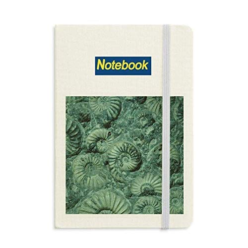 Nautilus Ammonites Fossils Specimen Notebook Classic Journal Diary A5