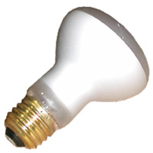 100 Watt Incandescent Flood Light Bulb
