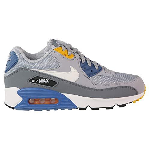 Nike Mens Air Max 90 Essential Running Shoes Wolf Grey/White/Indigo Storm AJ1285-016 Size 13 (Nike Air Max 90 Mens Size 13)