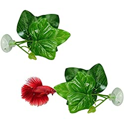 TOOGOO 2 Pack Betta Fish Leaf Pad - Improves Betta'S Health by Simulating The Natural Habitat( Double Leaf Design, One Big and One Small )