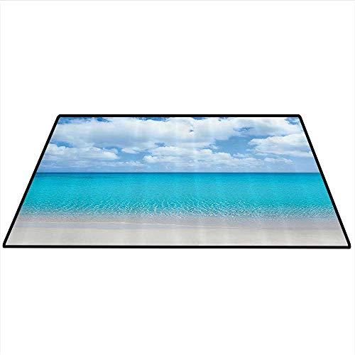 on Dining Room Home Bedroom Carpet Solitude Peaceful Beach Scene with Blue Ocean and Cloudy Sky Pattern Artwork Home Decor Area Rug 3'x5' (W90cmxL150cm) Aqua Blue Ivory ()
