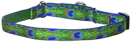 "LupinePet Originals 3/4"" Tail Feathers 14-20"" Martingale Collar for Medium and Larger Dogs"