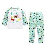 Jchen(TM) Fashion Newborn Kids Baby Boy Girl Dinosaur Print Tops+Pants 2 PCS Pajama Home Wear Outfits for 0-4 Y (Age: 0-6 Months)
