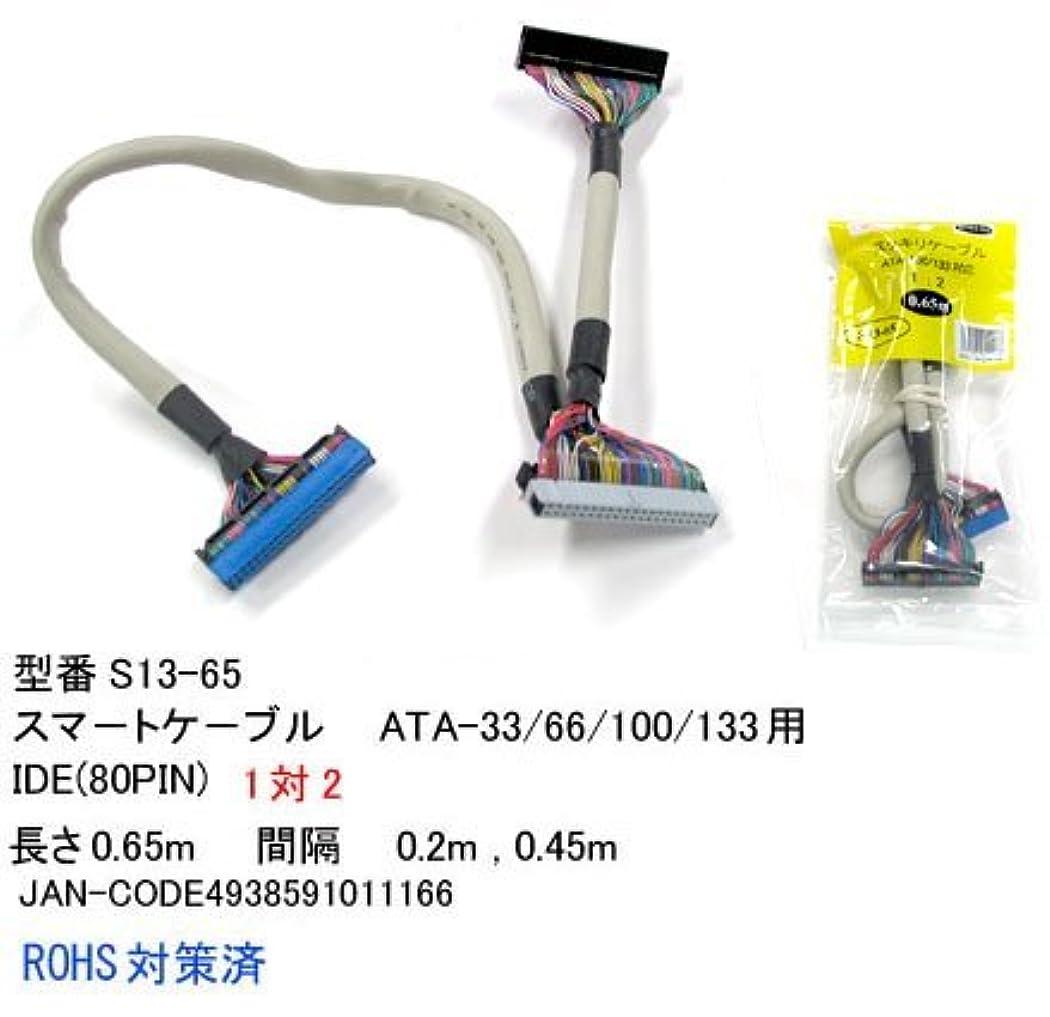 アンビエントベール不運Cyberplugs SFF-8484-4 SATAケーブルワイヤ SASコントローラー 32ピン 1m