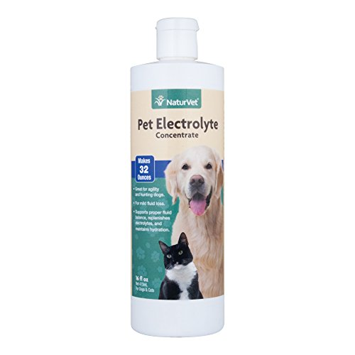 NaturVet - Pet Electrolyte Concentrate for Dogs & Cats - Plus Breath Aid - 16 oz | Supports Proper Fluid Balance, Replenishes Electrolytes & Maintains Hydration | Great for Agility & Hunting Dogs (Best Drink To Replenish Electrolytes)