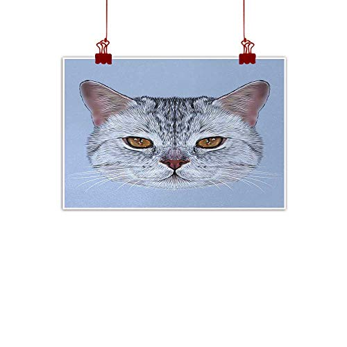 "Artwork Office Home Decoration Cat,Scottish Straight Kitty Portrait Pet Lovely Companion Hipster Animal Graphic,Light Grey Baby Blue 20""x16"" for Boys Room Baby Nursery Wall Decor Kids Room Boys Gift"