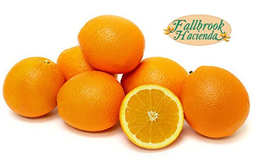 Fresh Squeezed Orange Juice - Organic Oranges - Extra Sweet Valencia Oranges - No Pesticides or Herbicides (Medium)
