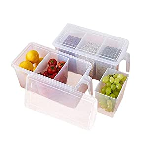 TS WITH TECHSUN Pack of 1 Refrigerator Organizer Container Square Handle Food Storage Organizer Boxes – Clear with Lid, Handle and 3 Smaller Bins