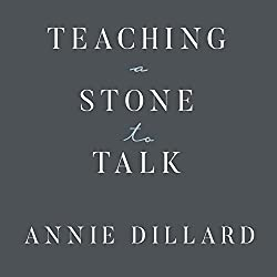 Teaching a Stone to Talk