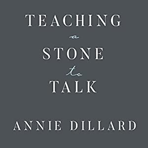 Teaching a Stone to Talk Audiobook
