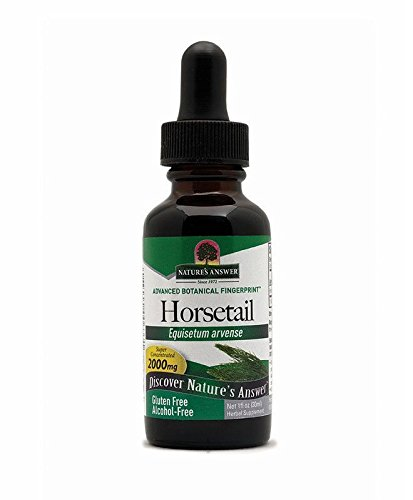 Nature's Answer Alcohol-Free Horsetail Herb, 1-Fluid Ounce